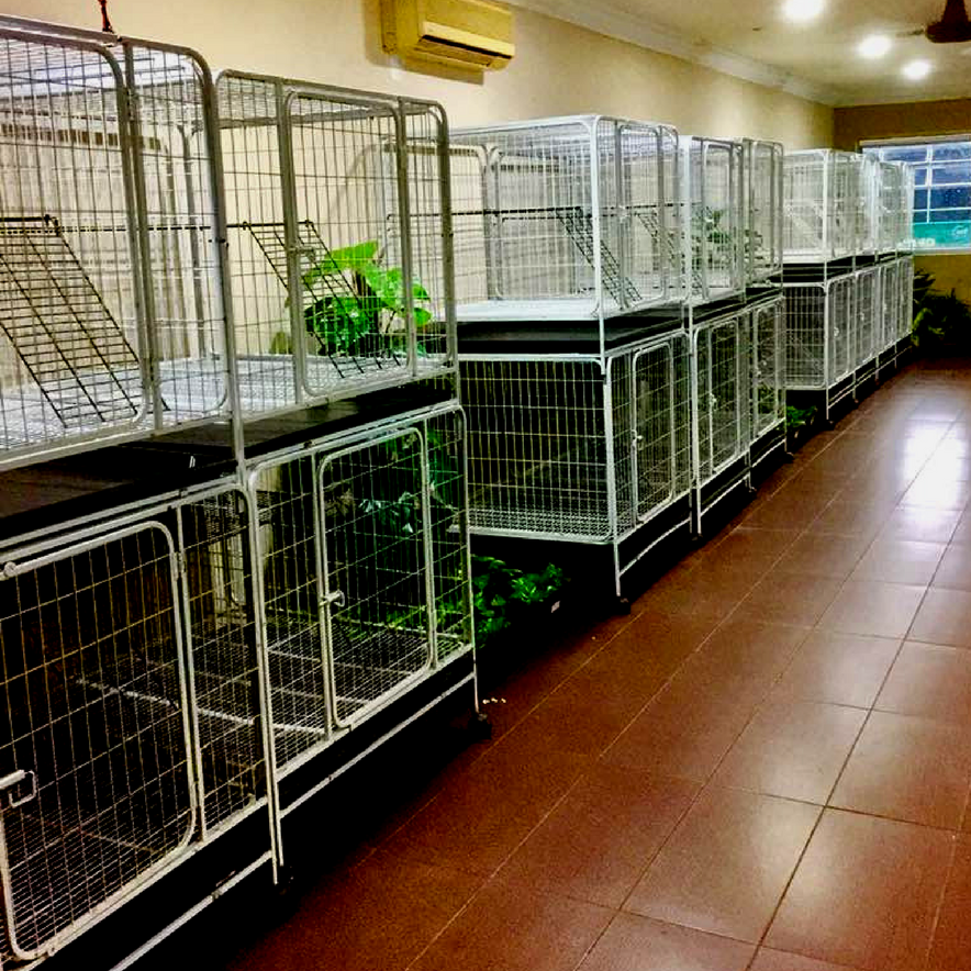 Pets boarding in Rawang, Selangor